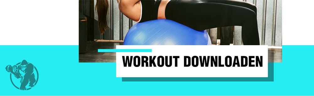 Pezziball Übungen Workoutplan